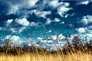 klaus_joehle_blog11